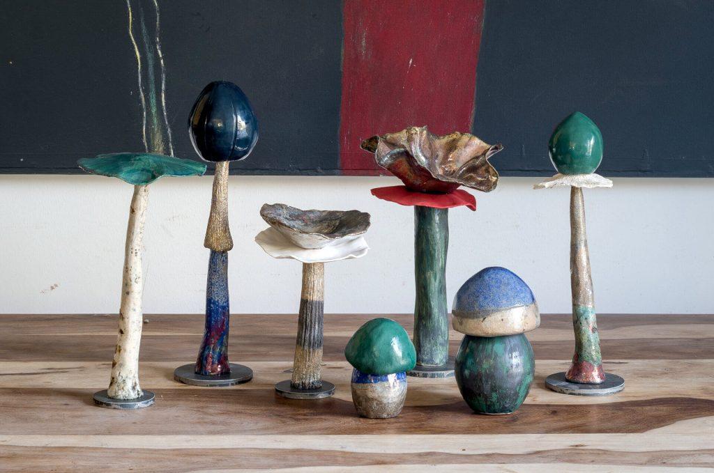 Set Funghi #1 - Zanellazine