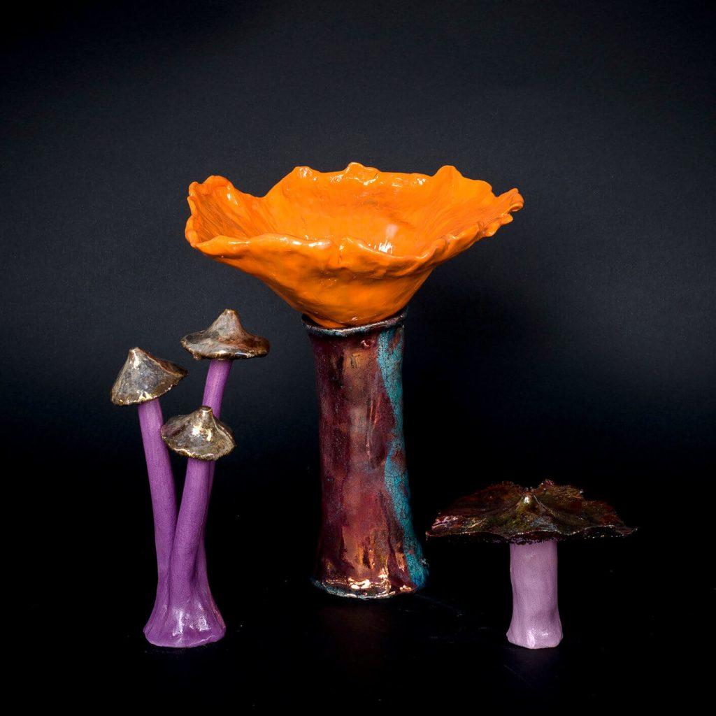 Set Funghi #2 - Zanellazine