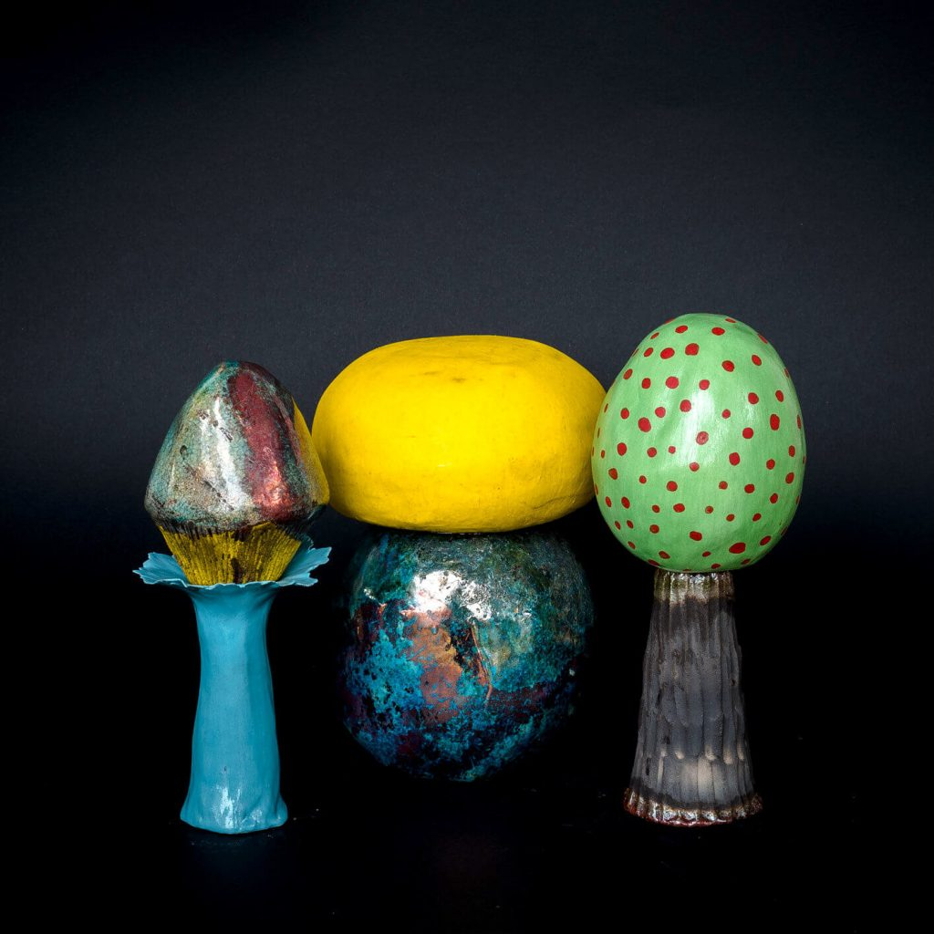 Set Funghi #3 - Zanellazine